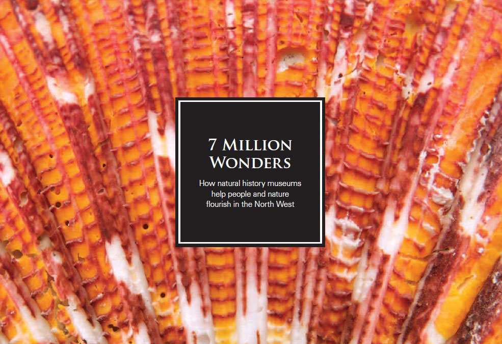 7 Million Wonders, front cover