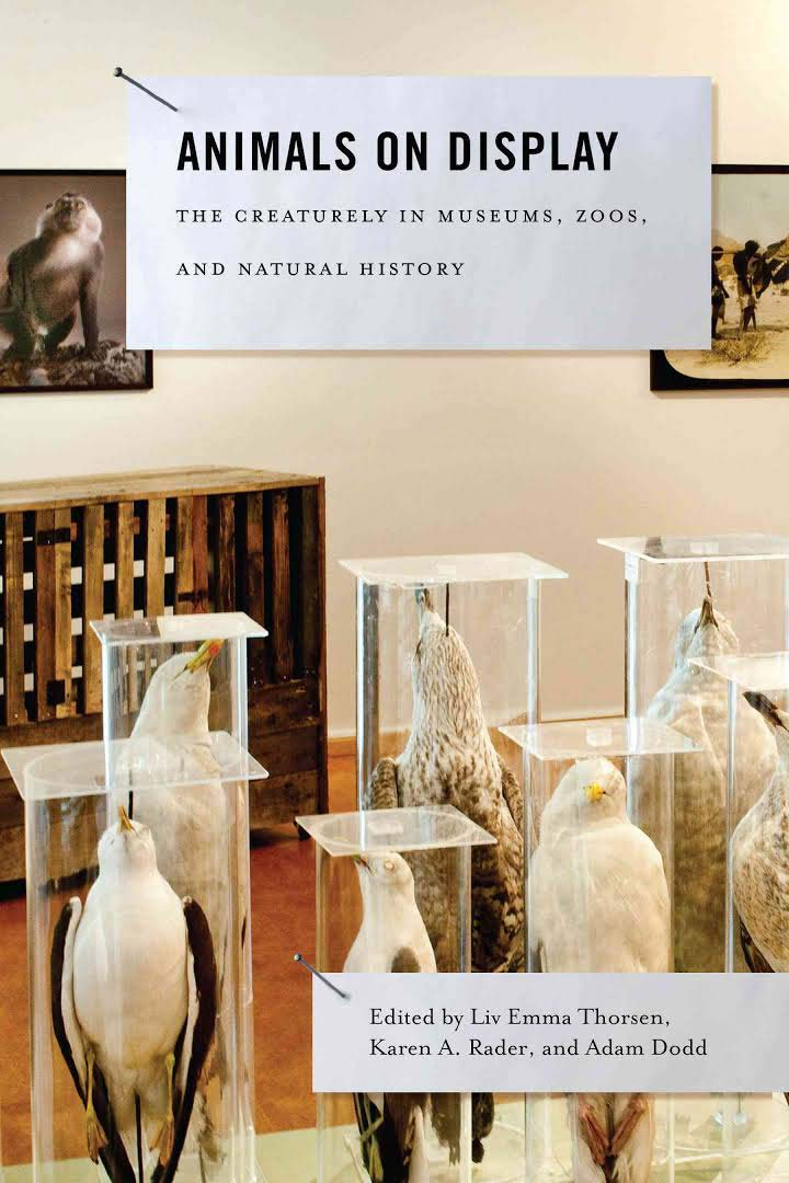 Front cover of Animals on Display