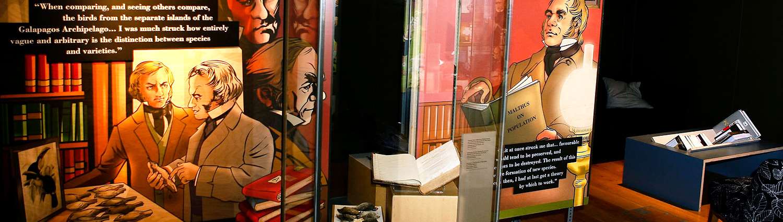 Darwin Festival exhibitions
